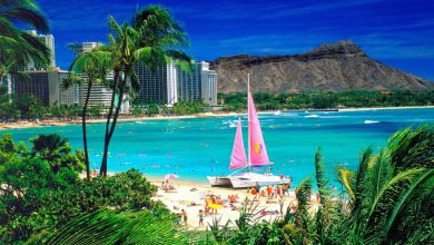 Photo of DiscountedHawaiiVacations: Detailed Information