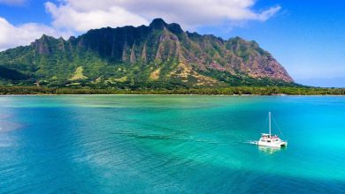 Photo of Honolulu Hawaii Hotels Discounted: Detailed Review and Information