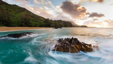 Photo of CheapHawaii VacationPackages : Detailed Review
