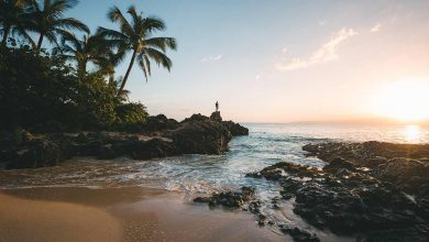Photo of CheapVacationPackagesHawaii : Detailed Review and Tips