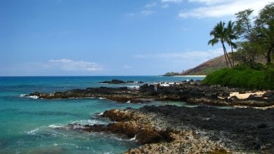 Photo of Climate InHonoluluHawaii : Detailed Review Article