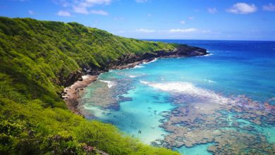 Photo of Hawaii Honolulu Vacations: 30 Things to Do in Honolulu!
