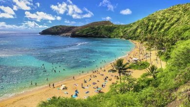 Photo of Oahu Vacation Packages With 3D Tour: Detailed Information